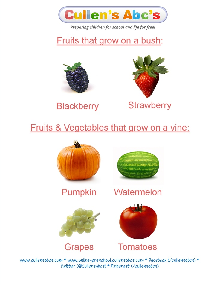 crops where fruits vegetables grow info for preschoolers as featured in the down on the farm theme in the diy online preschool