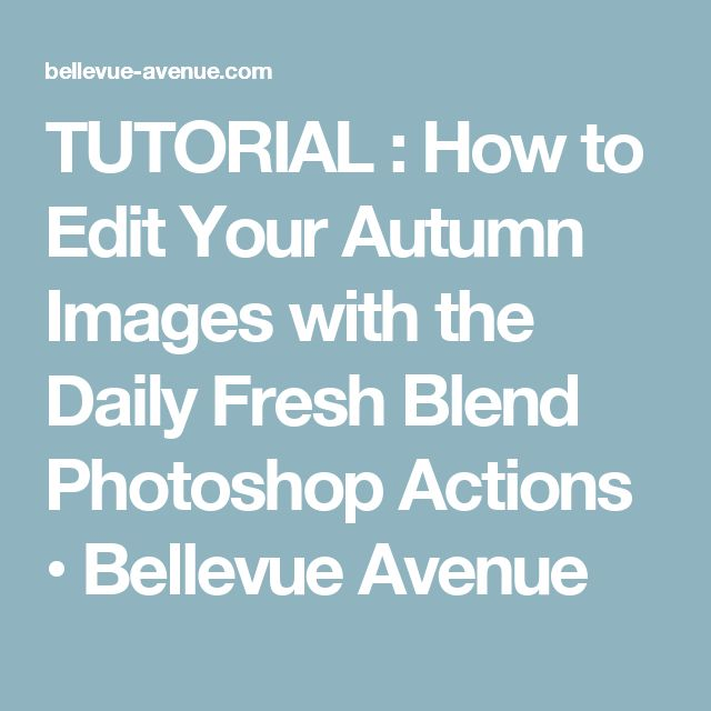 TUTORIAL : How to Edit Your Autumn Images with the Daily Fresh Blend Photoshop Actions • Bellevue Avenue