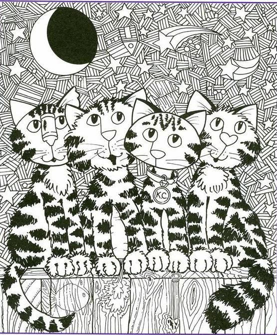 Cats Fence Cat Coloring Color Pages