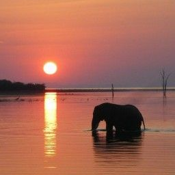 Most Popular Sunset Pictures   Greatest Sunsets   Sunset Images