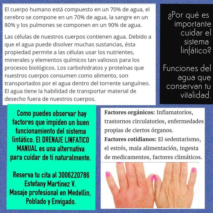 #sistemalinfatico #drenaje #linfa #medellin #envigado #poblado #spa #estetica #facial #corporal #esteticamedellin #estres #circulacion #stress #circulatorysystem #lymphatic #system 3006220786 http://spaenergiamenteycuerpo.blogspot.com