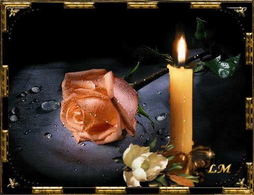 Candle with pretty moist rose