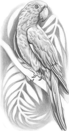 Aztec Parrot Tattoo Design