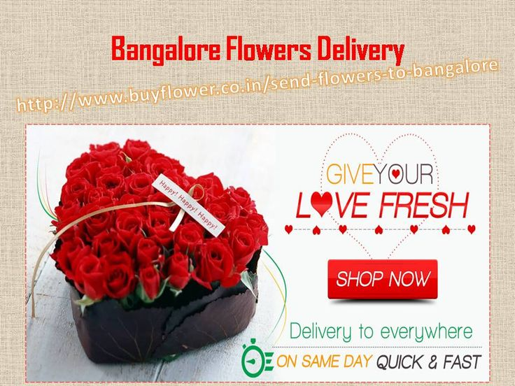 Send Flowers To Bangalore and anywhere in india through Buy Flower. Banglore online florist is the world best online florist in india.   http://www.buyflower.co.in/send-flowers-to-bangalore