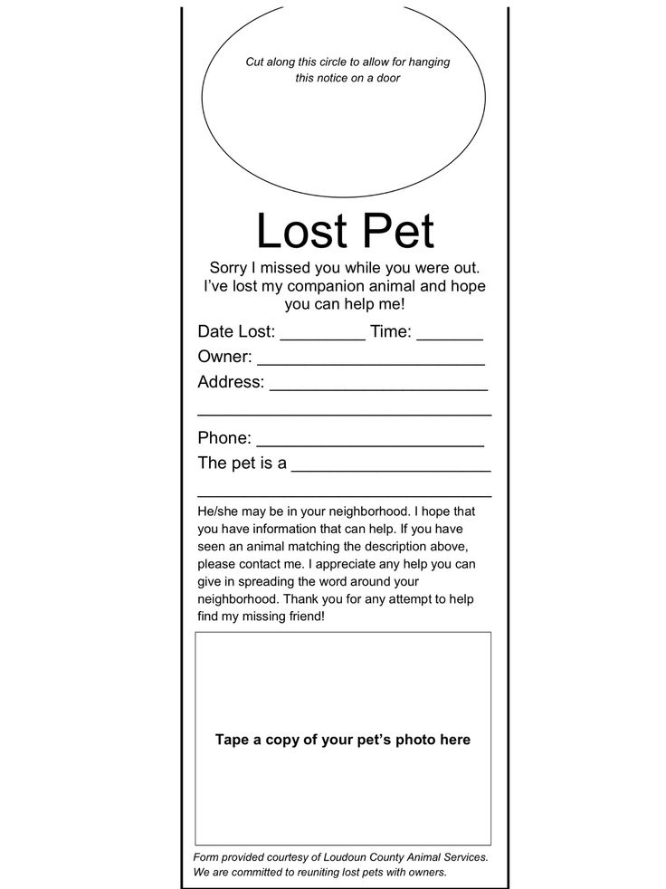 Lost Dog Flyer Template Word 40 lost pet flyers missing cat / dog - missing pet template