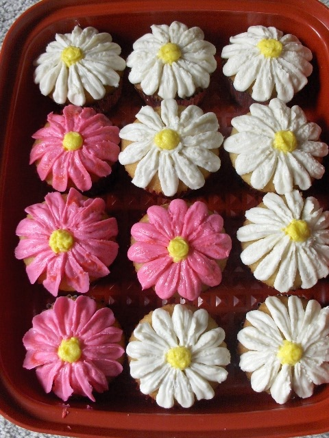 Gerber daisy cupcakes!!! YUMMY!!!!!!!!!!!!!!!!!!!!!!!!!!!!!!!!!!