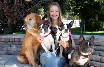 denise richards & her 5 dogs which include 2 bostons