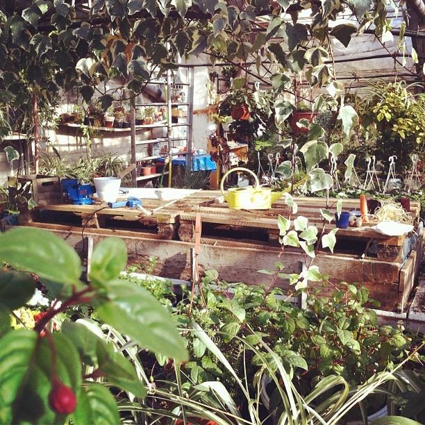 Laboratorium Kwiatkibratki
