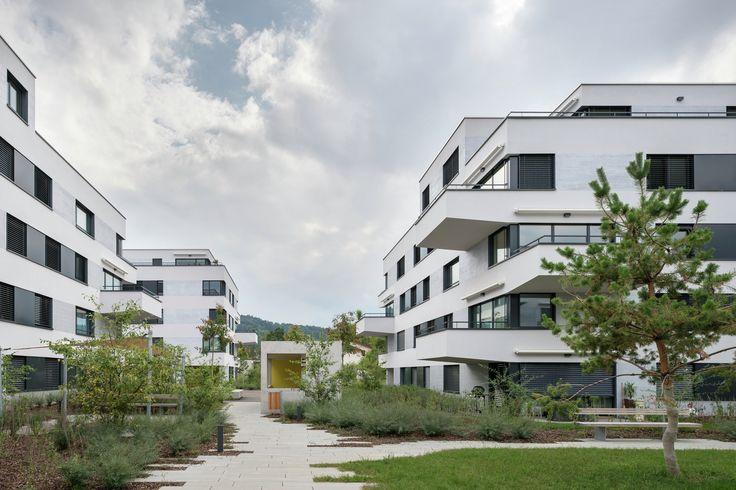 Construído na 2011 na Waltalingen, Suíça. Imagens do Michael Egloff. Três estruturas formam umgrupo, incluindo cada uma um pátio central. O posicionamento dos três volumes é traduzido na ótima exposição solar e...