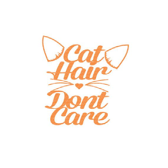Cat Hair Dont Care Set Of Two SVG STUDIO Ai by CraftyLittleNodes