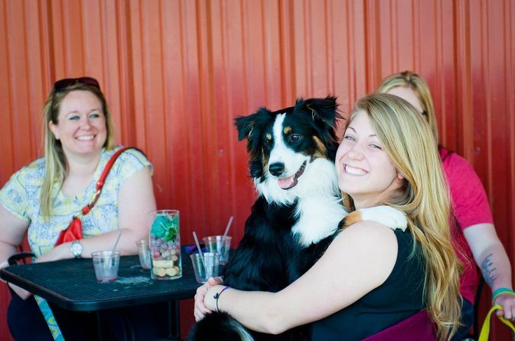 Check out this cute Collie dog here hanging out with his mom and pals! They are enjoying some sunshine and wine at the local winery at Somerset Ridge Vineyard and Winery.  #brownfootbear #brownfootbearphotography #photography #gunnarwilliamsphotography #gunnwilliams #dog #dogs #dogsofinstagram #dogoftheday #woof #mustlovedogs #withdog #love #KansasCity #kc #Kansas #ks #kansasphotos #summer #travel #art #dogart #winery #wine #vineyard #vino #somersetridge #travelks #wineanddogs