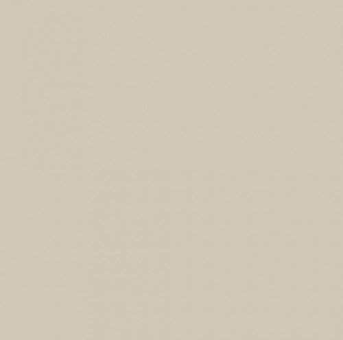 Sherwin Williams Accessible Beige - wall color