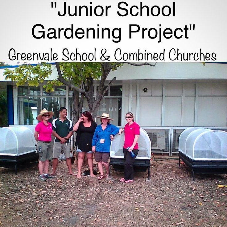"86 Likes, 4 Comments - Vegepod (@vegepod) on Instagram: ""These pods are fantastic! Thanks to help from Combined Churches, Greenvale School were able to…"""