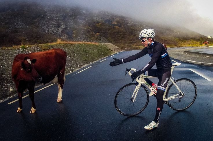 Roadtripping Norway | CyclingTips
