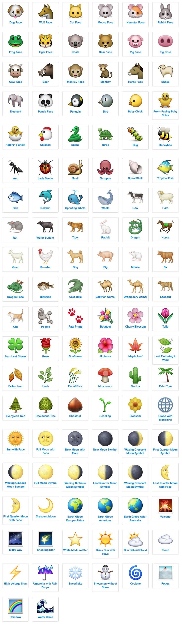 Snapchat emoji meanings everything you need to know - Emoji Icon List Nature And Animals With Meanings And Definitions