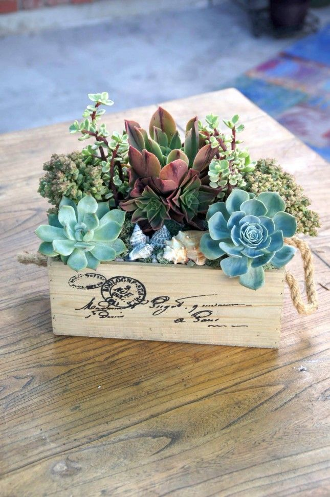 14 Creative Succulent Container Gardens to DIY or Buy Now via Brit + Co