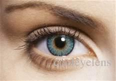 Christmas Special Fresh Colorblend Offers Contact Lens =Case Free Contact Lenses Color Contact Lens Crazy Lens 3 Tones Cheap Contact Lenses Online Coloured Prescription Contact Lenses From Cooleyelens, $0.9| Dhgate.Com