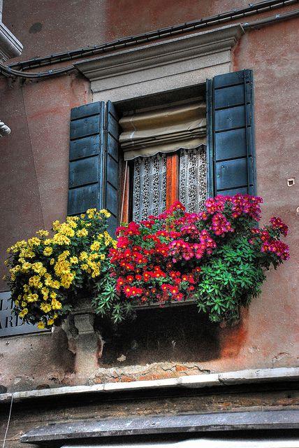 Balcony Garden - Venice, Italy