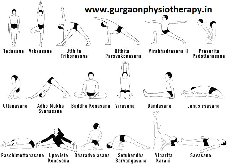 The Asanas of Yoga: The asanas of yoga can increase your flexibility, strengthen and tone muscles, balance hormones, cleanse and flush the internal systems of your body, calm your mind and reduce stress.