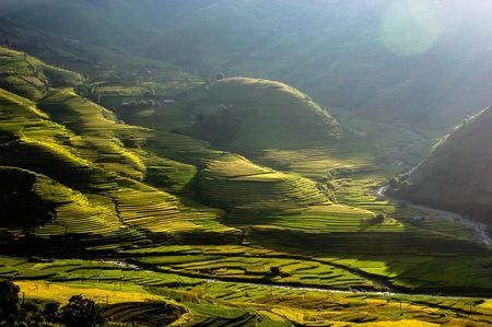 Tu Le valley. Yen Bai, Viet Nam Photo by Phạm Ngọc -- National Geographic Your Shot