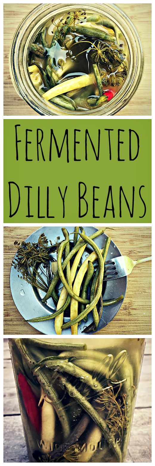 Got green beans? Make these tasty lacto-fermented dilly beans!