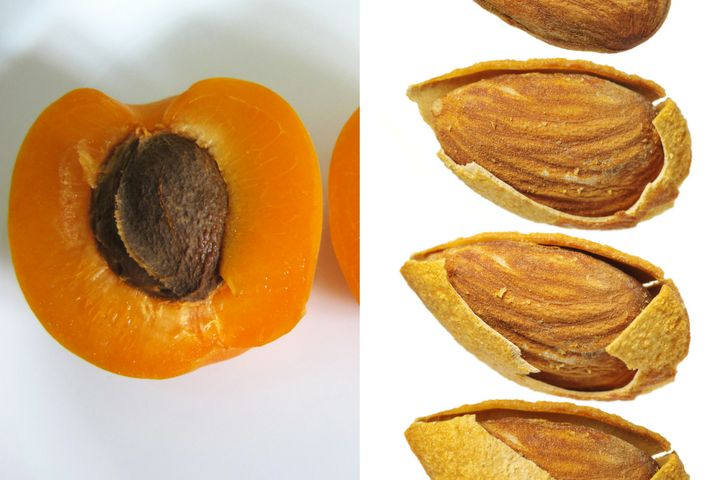 Health Canada: Apricot kernels look like almonds, but can cause cyanide poisoning