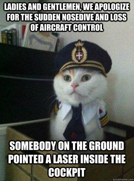30 Funny cat Pictures #Funny #Cats
