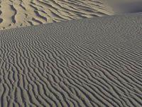 ID: #96-desert galerie de wallpapere
