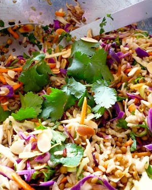 Coleslaw, lentil and rice salad