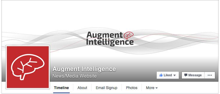 Augment Intelligence Facebook branding by Mervi Emilia