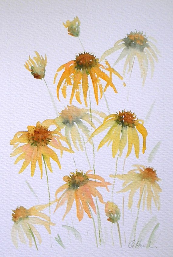 ECHINACEA 2 An Original Watercolour Painting by Amanda Hawkins  Size of painted area: 14 x 22cm approx Not framed or mounted  About The Artist  Amanda Hawkins has been painting in watercolours for most of her life, and graduated in Art, Design and Illustration at Southampton Institute. Amanda has worked on numerous commissions both private and commercial, designing greeting cards and illustrating wildlife books. She has held many successful exhibitions of her work across the South of England…
