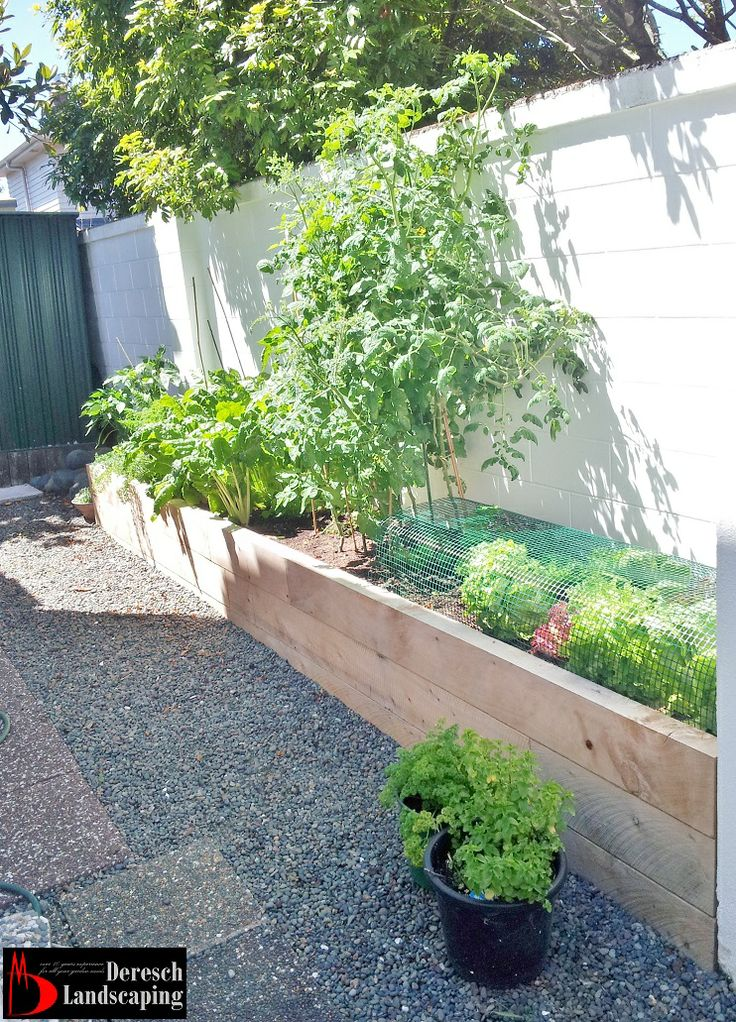 raised planterbed made of macrocarpa sleepers - design and construction by Deresch Landscaping - DL13041-01-0035