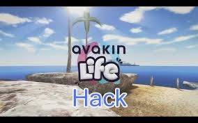 Image result for Avakin Life Hacks