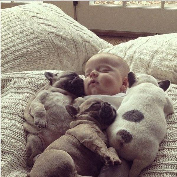 Group cuddle