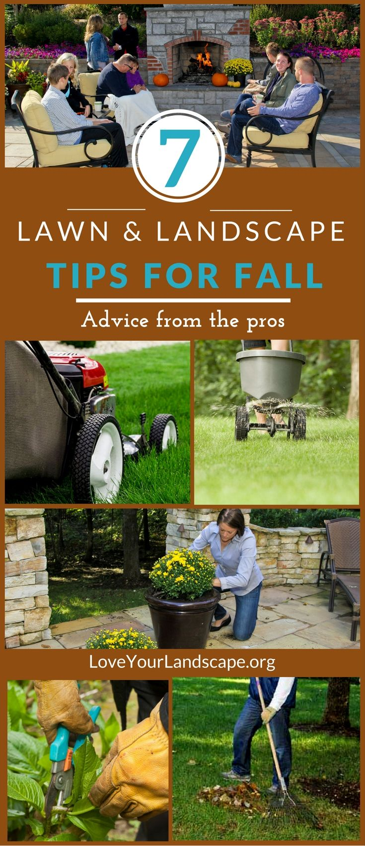 The must know 7 fall lawn care and landscaping tips from professionals