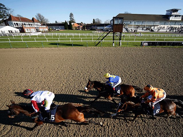 Follow The Money:  Moonlight being backed to shine at Lingfield  https://www.racingvalue.com/follow-the-money-moonlight-being-backed-to-shine-at-lingfield/