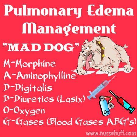 50 Nursing Mnemonics and Acronyms: http://www.nursebuff.com/nursing-mnemonics-and-acronyms-respiratory-endocrine-and-nervous-systems/ #nurse #nursery #nursing https://www.sunfrogshirts.com/search/?7833&cId=0&cName=&search=nurse