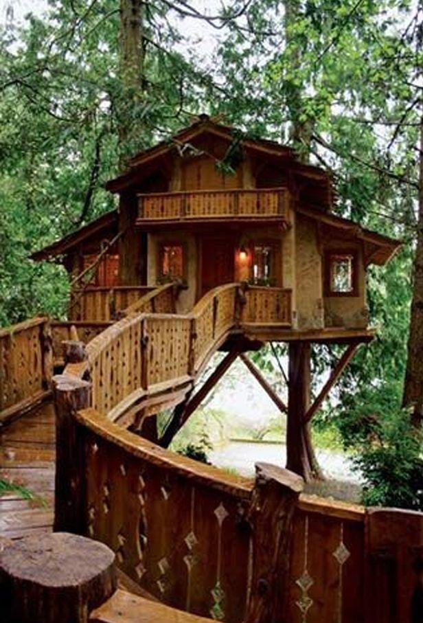 Oltre 25 fantastiche idee su case sull 39 albero per bambini for Case in legno sugli alberi