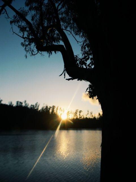 Laguna la Luz de Curauma❤🌅🌳🌞