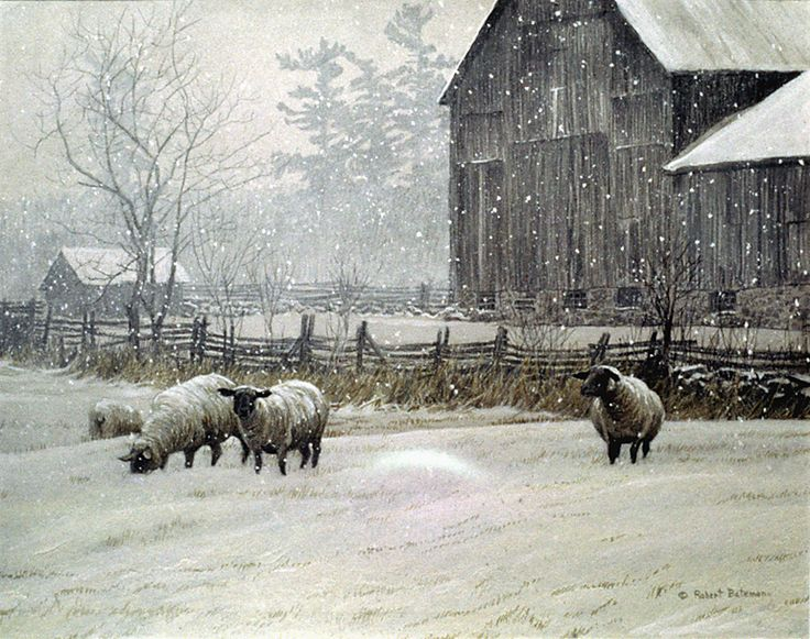 """Snowy Sheep & Barn"", by Robert Bateman- This is exactly how I pictured my sheep farm to look like."