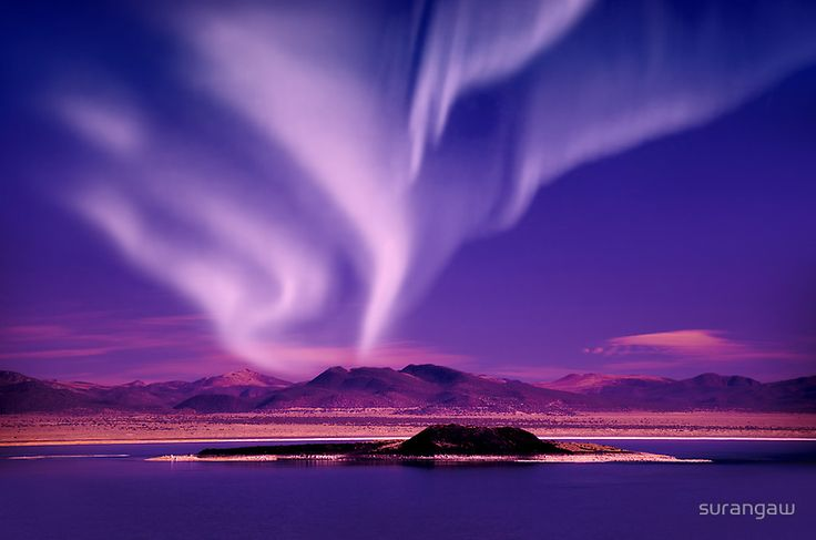 Northern Lights aurora borealis in Iceland ✯ ωнιмѕу ѕαη∂у