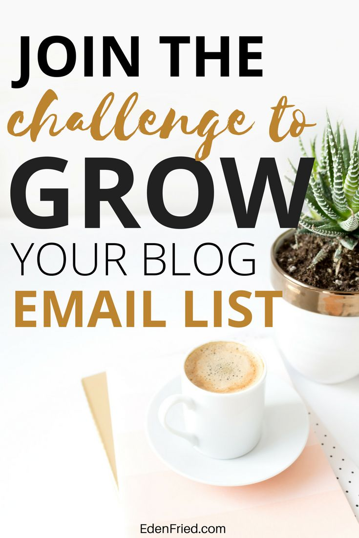 Grow your email list by getting tips from some of the greatest email marketers. Email lists help grow your blog, increase your traffic, your page views and your monetization success.