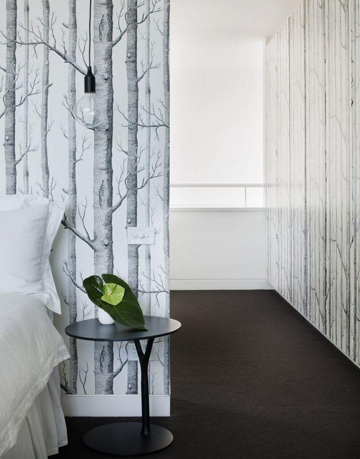 papier peint troncs d'arbre woods: