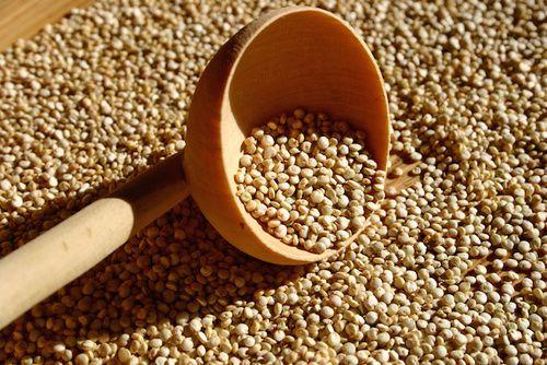 Quinoa, proprietà e benefici
