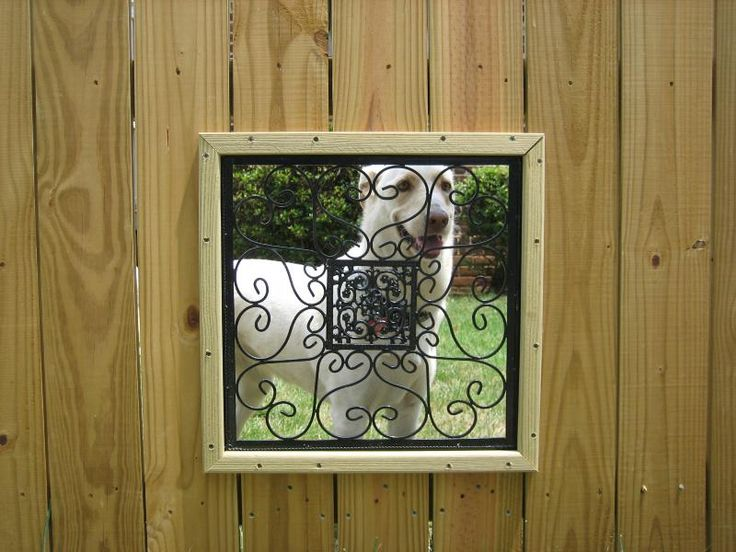 Dog Fence Window...Fancy