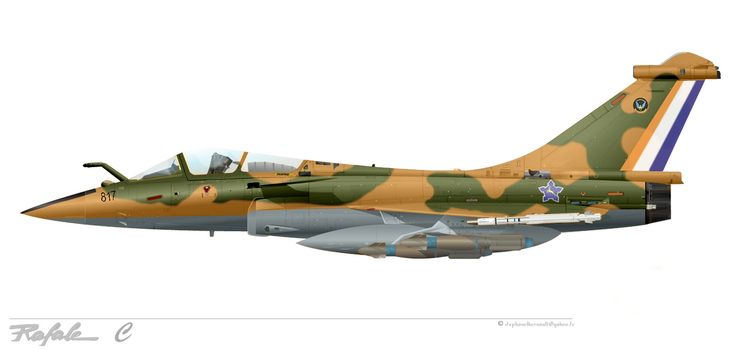 Rafale C with south african air force colors