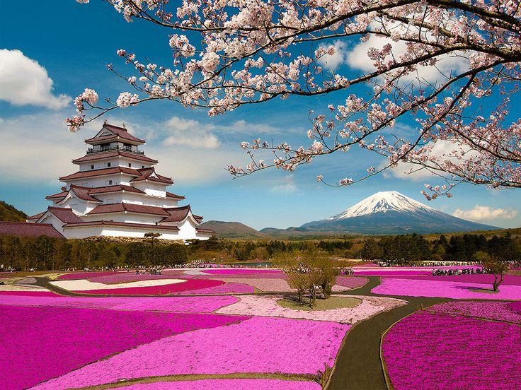 Japan honeymoon in Asia. Tips, advice and ideas for honeymoon on www.smartgroom.com #honeymoon #honeymoondestinations #honeymooninasia