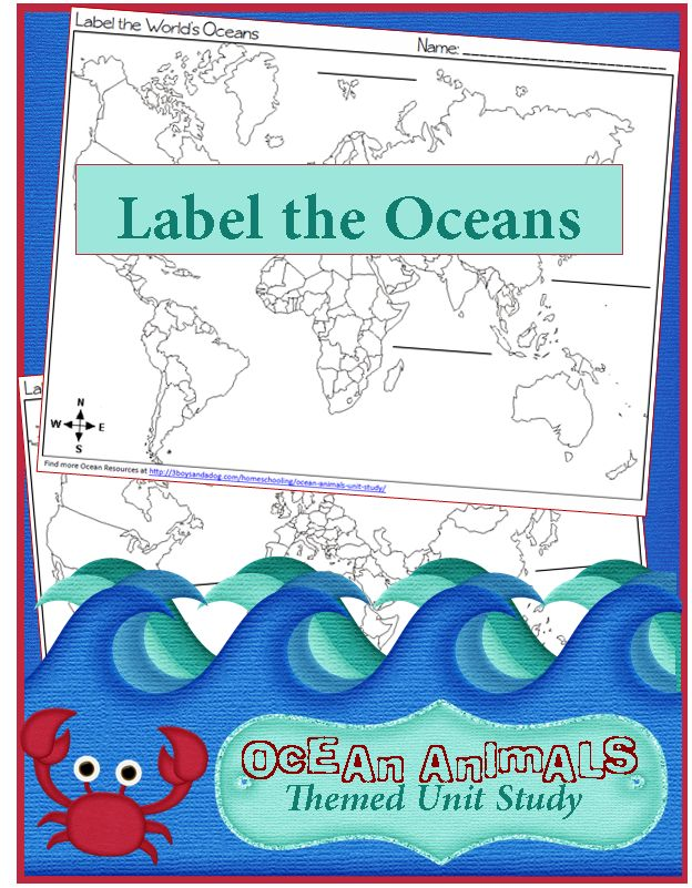 If you're new here, you may want to subscribe to my FREE Daily Updates Newsletter. Thanks for visiting!We have spent the last few months learning so much about some Ocean Animals, but what about the places these animals call home?  These geography: label the world's oceans worksheets can be used while learning about the oceans. […]
