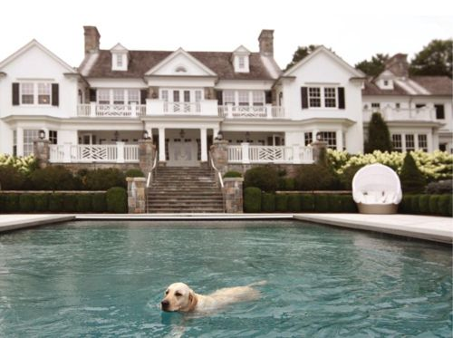 love this house & the puppy: East Coast, Future Houses, White Houses, Dreams Home, Dreams Houses, Yellow Labs, Hampton Houses, Southern Home, Dreams Life