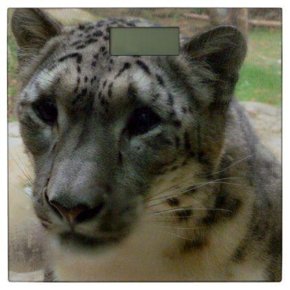 Snow leopard bathroom scale - cat cats kitten kitty pet love pussy